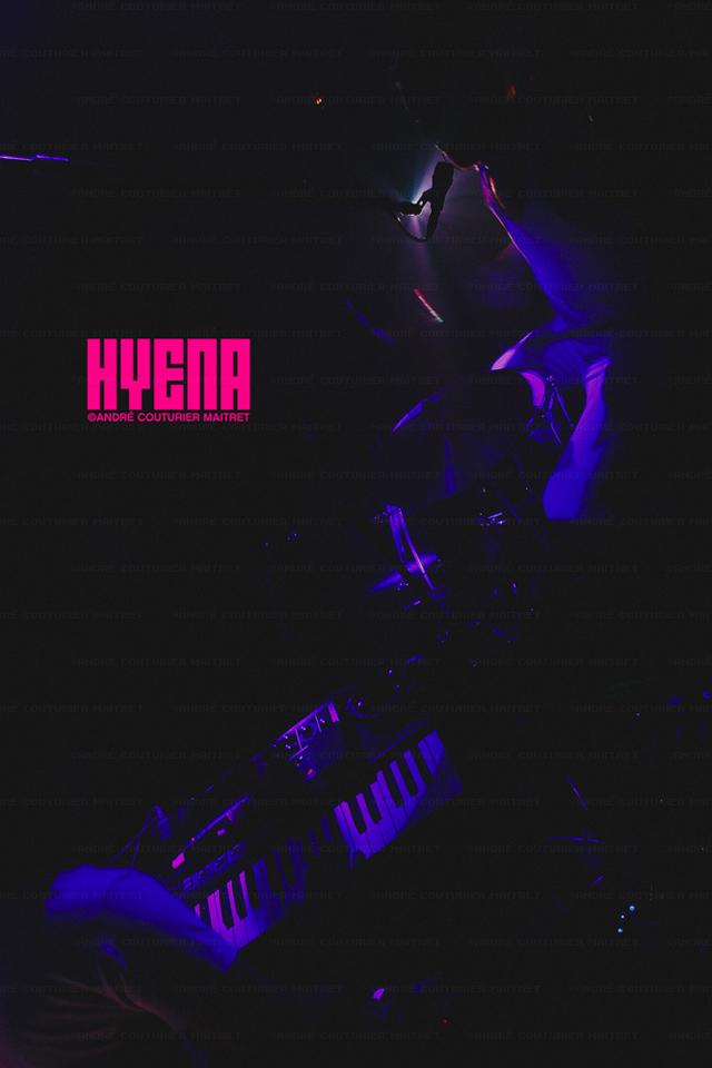 andrecm-hyena_voyeur_coop-bday10